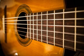 Frets and strings on an acoustic guitar