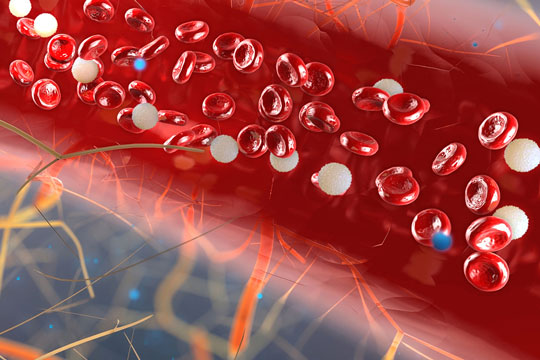 Blood cells (3D rendering)