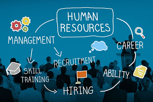 Components of the human resource function