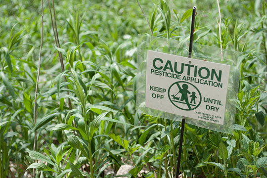 Pesticide applied to plants