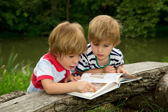 Children looking at a picture